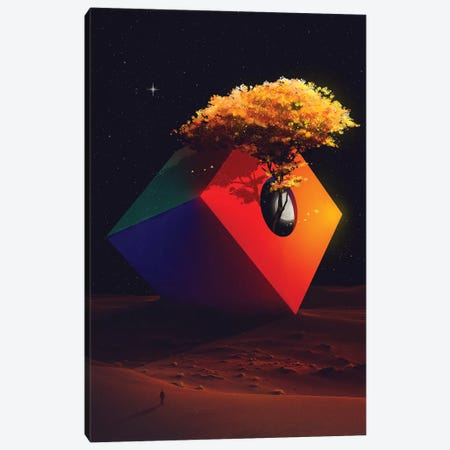 The Sanctuary Canvas Print #NID359} by Nicebleed Canvas Print