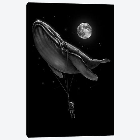 Hitching A Ride Canvas Print #NID378} by Nicebleed Canvas Print