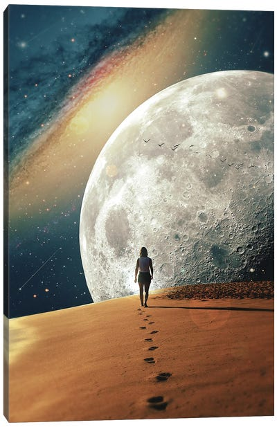 Alone With The Moon II Canvas Art Print