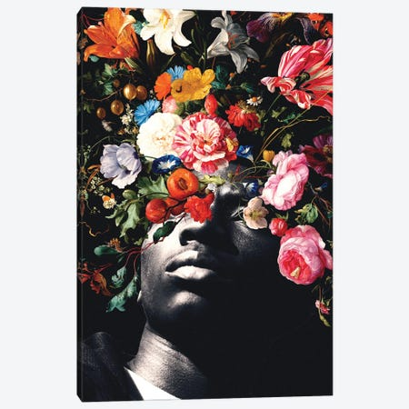 Vision II Canvas Print #NID449} by Nicebleed Canvas Print