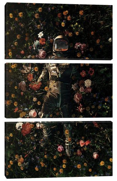 Garden Delights Canvas Art Print