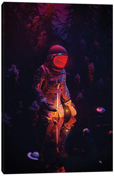 Stellar Spot Canvas Art Print