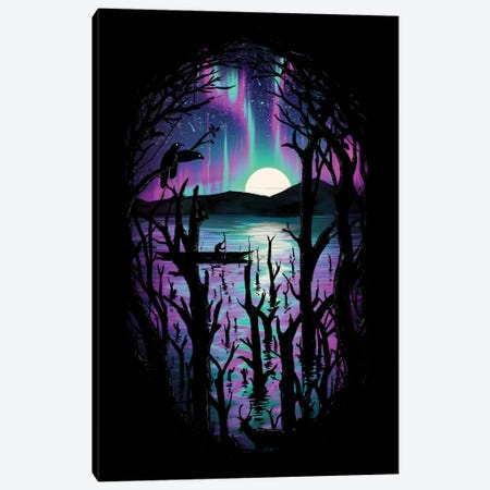 Night With Aurora Canvas Print #NID49} by Nicebleed Canvas Artwork
