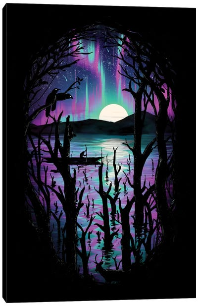 Night With Aurora Canvas Art Print