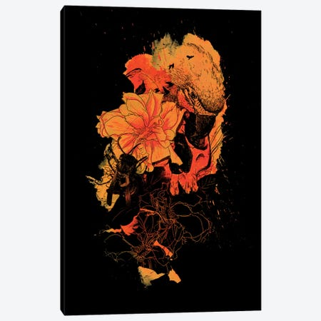 Pollination Canvas Print #NID53} by Nicebleed Canvas Art Print