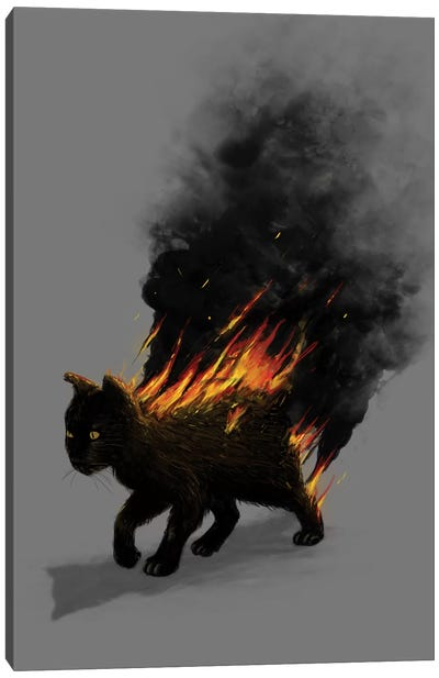 Cat On Fire Canvas Art Print