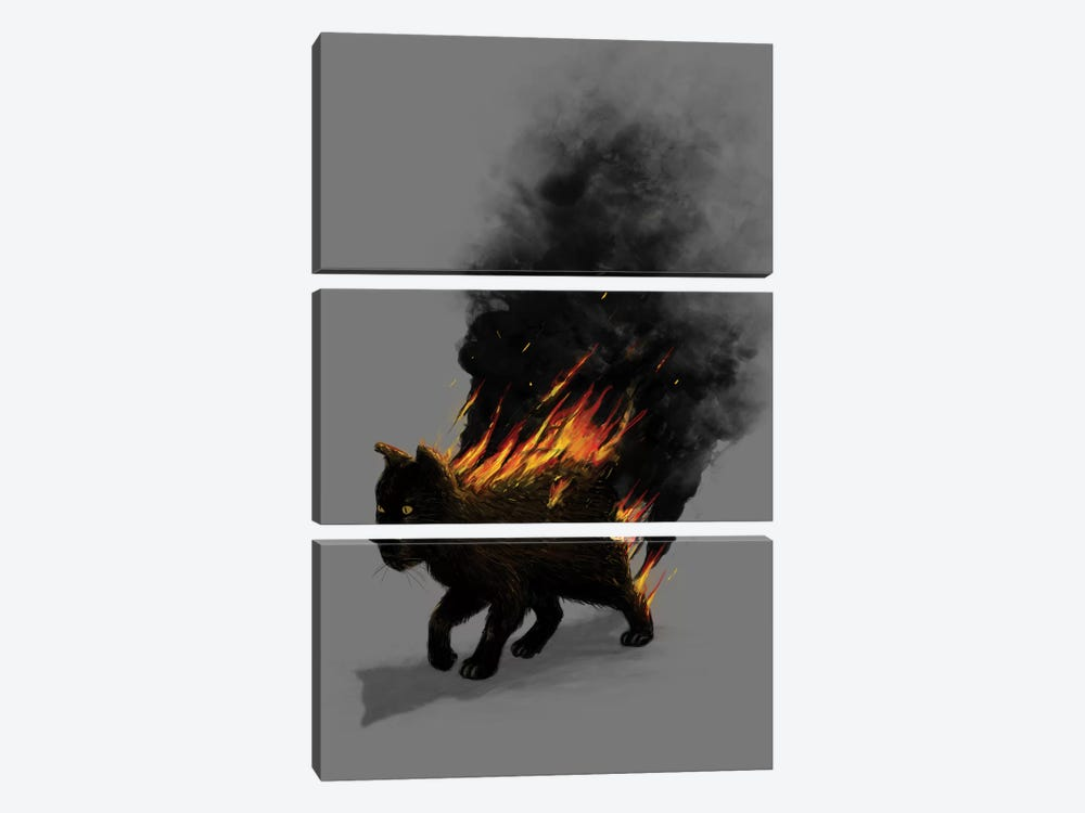 Cat On Fire by Nicebleed 3-piece Canvas Wall Art