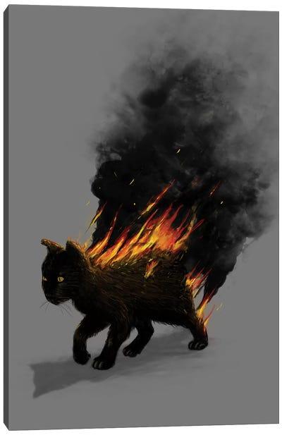 Cat On Fire Canvas Art Print