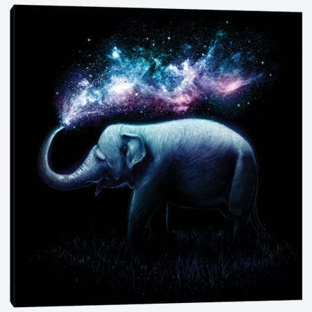 Elephant Splash Canvas Print #NID83} by Nicebleed Canvas Wall Art