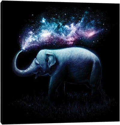 Elephant Splash Canvas Art Print
