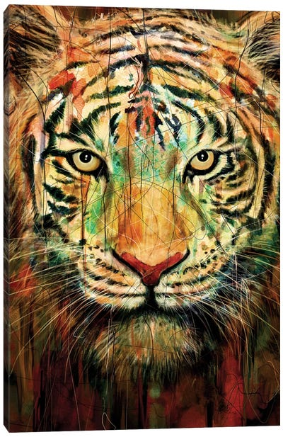 Tiger II Canvas Print #NID93