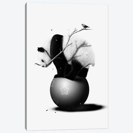 Balance Canvas Print #NID94} by Nicebleed Canvas Art