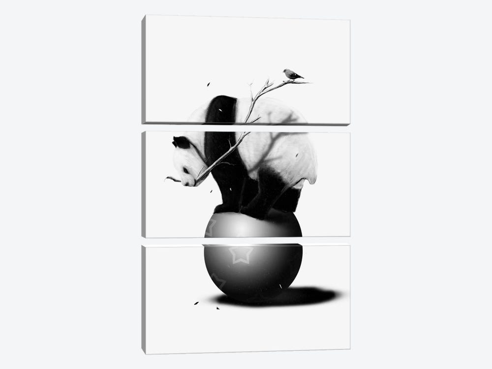 Balance by Nicebleed 3-piece Canvas Art