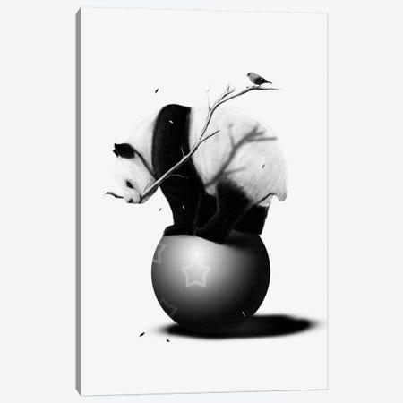 Balance 3-Piece Canvas #NID94} by Nicebleed Canvas Art