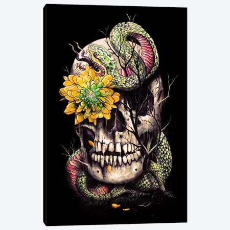 Snake And Skull Canvas Print #NID99} by Nicebleed Canvas Print