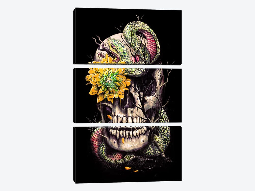 Snake And Skull by Nicebleed 3-piece Canvas Art Print
