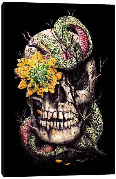 Snake And Skull Canvas Art Print