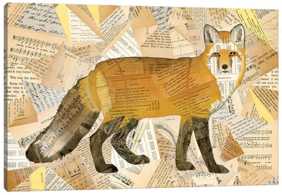Red Fox Collage I Canvas Art Print