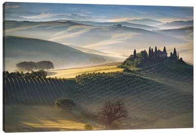 Belvedere Morning, Tuscany, Italy Canvas Art Print