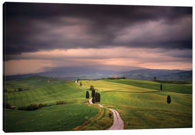 The Path Of The Gladiator, Tuscany, Italy Canvas Art Print