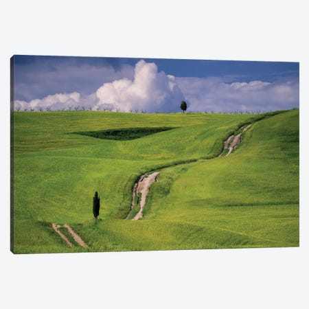 The Tuscan Way, Tuscany, Italy Canvas Print #NIL162} by Jim Nilsen Canvas Art Print