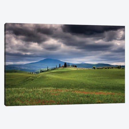 Approaching Storm, Tuscany, Italy Canvas Print #NIL163} by Jim Nilsen Canvas Art Print