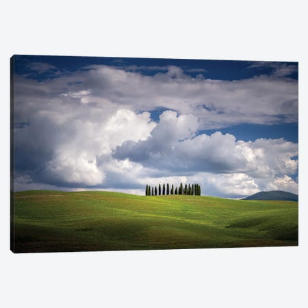 The Cypresses, Tuscany, Italy Canvas Print #NIL165} by Jim Nilsen Canvas Art