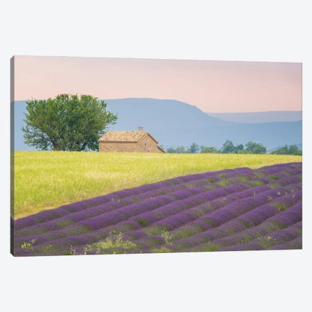 On The Valensole, Provence, France Canvas Print #NIL193} by Jim Nilsen Canvas Artwork