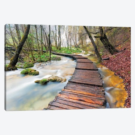 A Walk In The Woods, Plitvice Lakes National Park, Croatia Canvas Print #NIL3} by Jim Nilsen Canvas Print