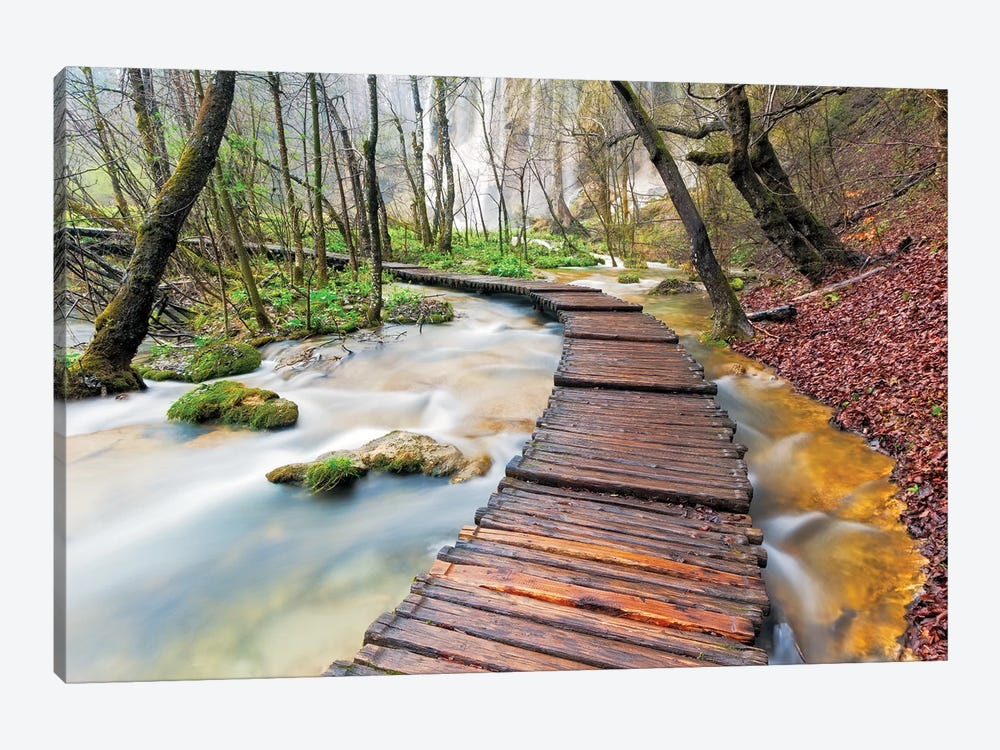 A Walk In The Woods, Plitvice Lakes National Park, Croatia by Jim Nilsen 1-piece Canvas Print