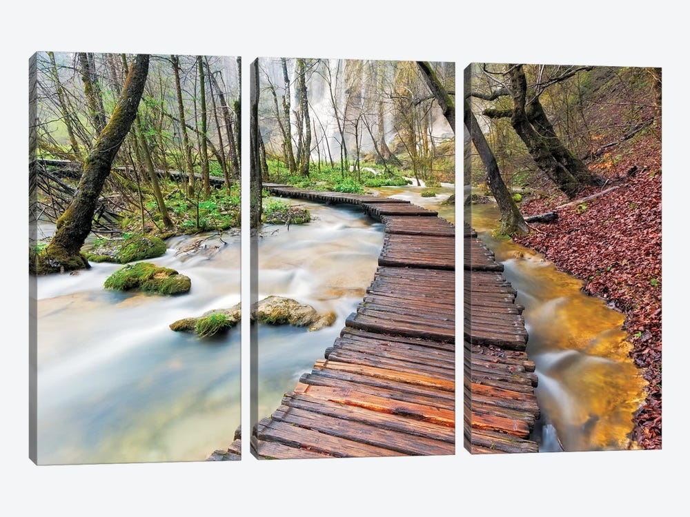 A Walk In The Woods, Plitvice Lakes National Park, Croatia by Jim Nilsen 3-piece Canvas Print