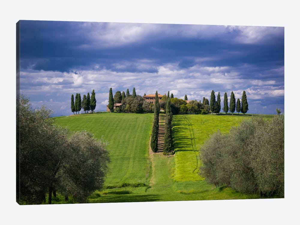 The Way Home, Tuscany, Italy by Jim Nilsen 1-piece Canvas Artwork