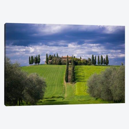 The Way Home, Tuscany, Italy Canvas Print #NIL64} by Jim Nilsen Canvas Art Print