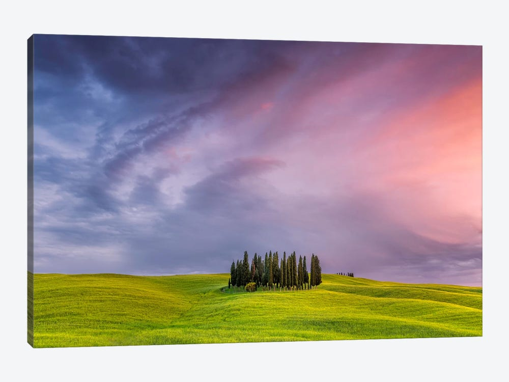 To The Heavens, Tuscany, Italy by Jim Nilsen 1-piece Canvas Wall Art
