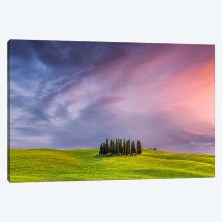 To The Heavens, Tuscany, Italy Canvas Print #NIL68} by Jim Nilsen Canvas Wall Art