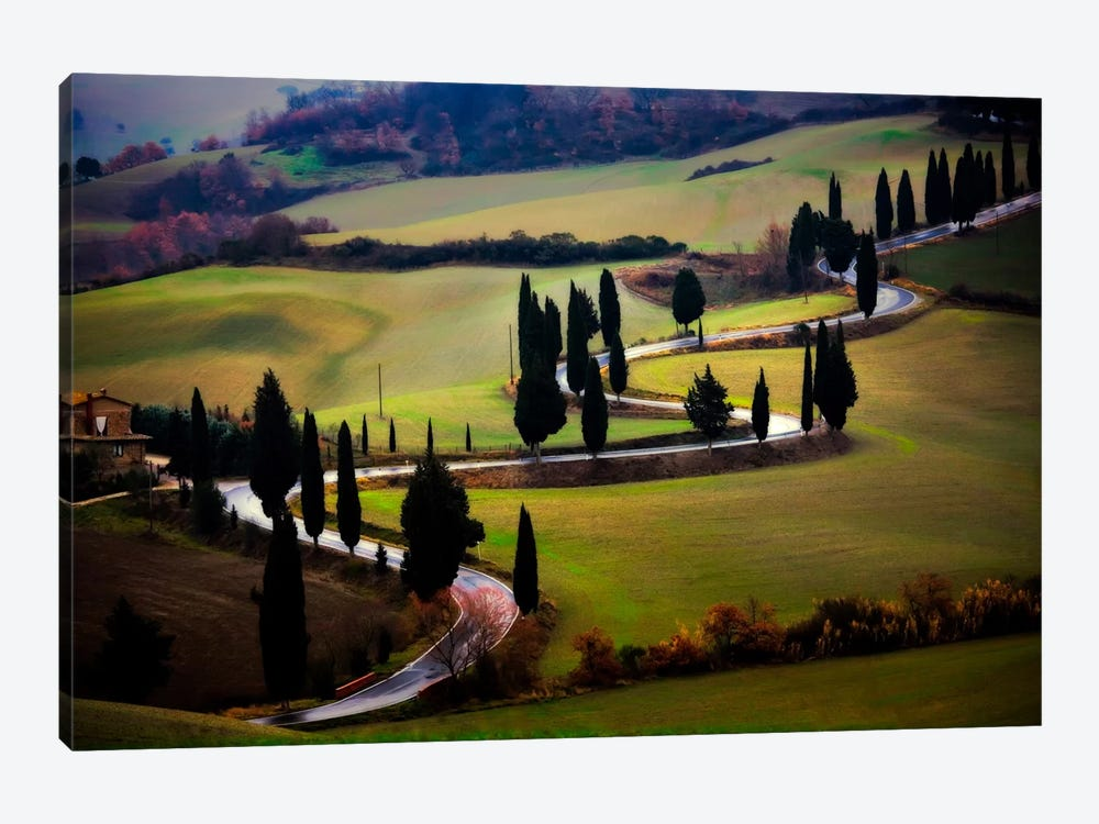 Tuscan Serpent, Tuscany, Italy by Jim Nilsen 1-piece Canvas Art