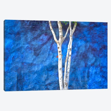 White On Blue, Ajijic, Mexico Canvas Print #NIL77} by Jim Nilsen Canvas Art