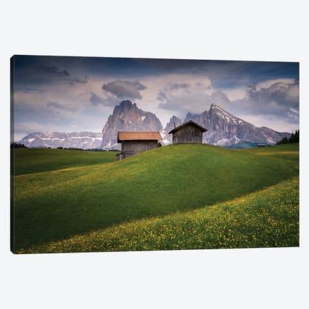 Alpine Delight, Dolomites, Italy Canvas Print #NIL85} by Jim Nilsen Canvas Print