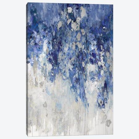 Cascade Indigo with Silver Canvas Print #NIR7} by Nikki Robbins Canvas Art Print