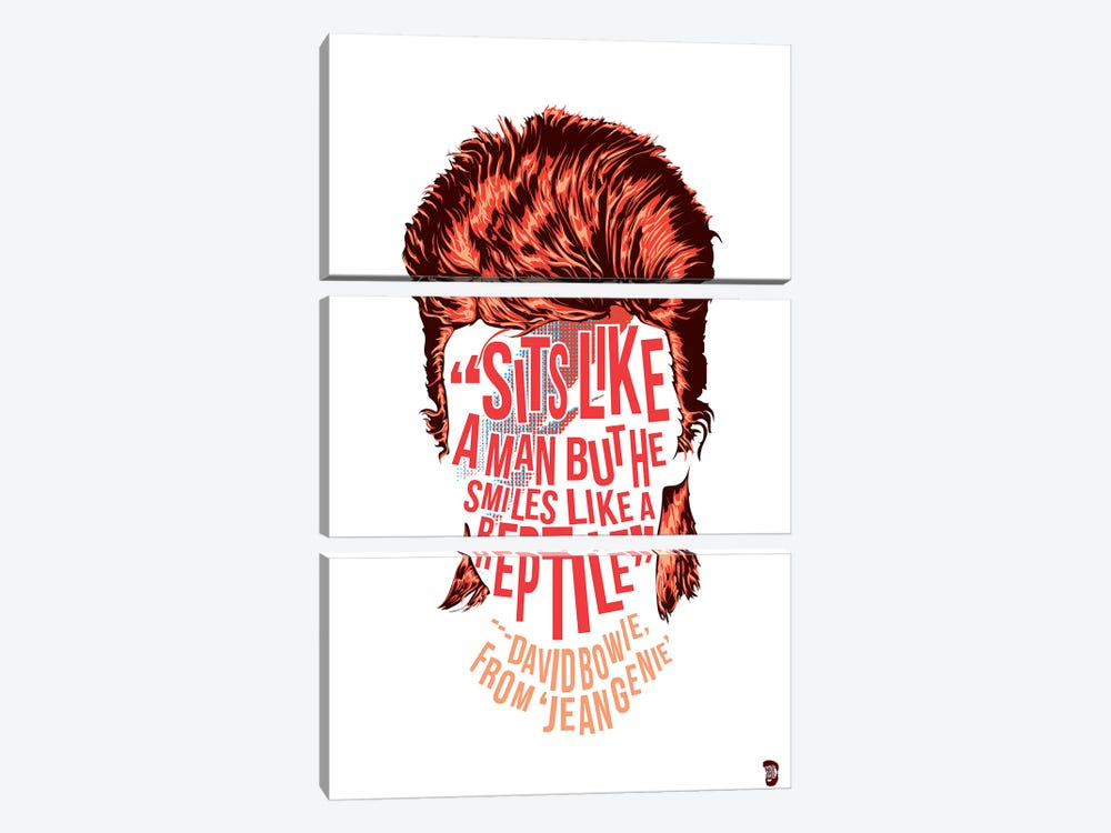 Bowie by Nate Jones Design 3-piece Canvas Artwork