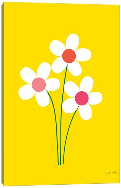 Daisies II Canvas Art Print