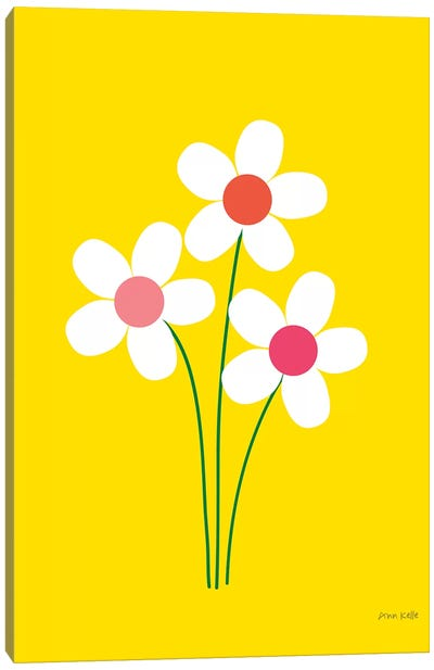 Daisies II Canvas Art Print