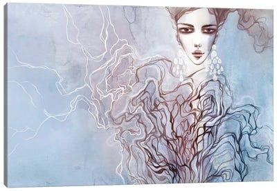 Air Minerals Canvas Art Print