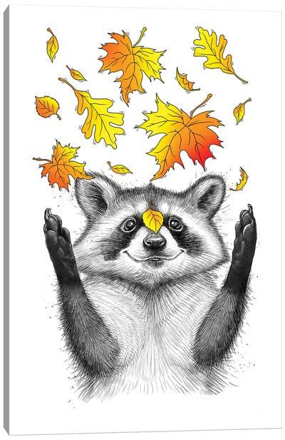 Autumn Raccoon Canvas Art Print