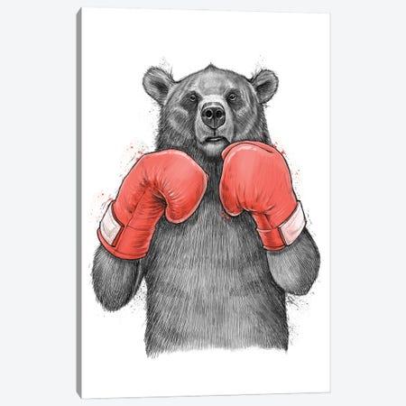 Bear Boxer Canvas Print #NKV12} by Nikita Korenkov Canvas Artwork