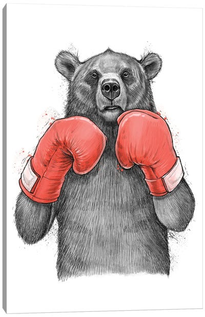 Bear Boxer Canvas Art Print