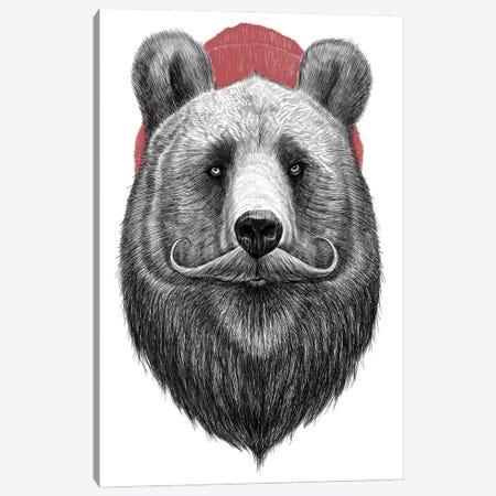 Bearded Bear Canvas Print #NKV15} by Nikita Korenkov Canvas Print
