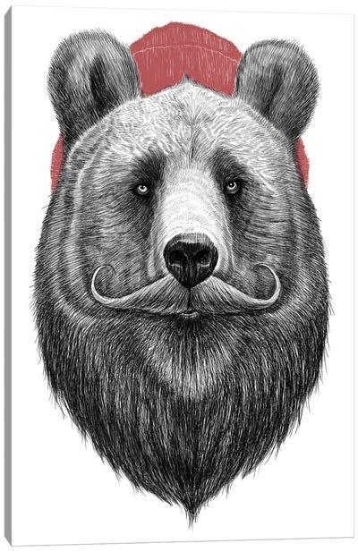 Bearded Bear Canvas Art Print