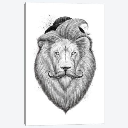 Bearded Lion Canvas Print #NKV16} by Nikita Korenkov Canvas Art Print