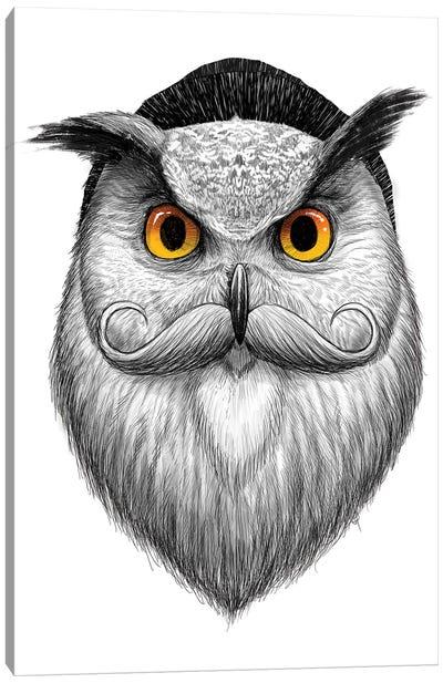 Bearded Owl Canvas Art Print